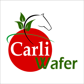 CarliWafer